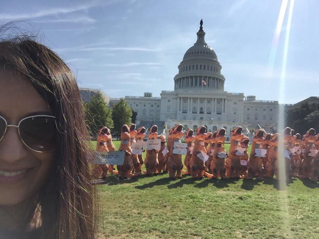 protest, volunteer, dinosaurs, capitol, americorps